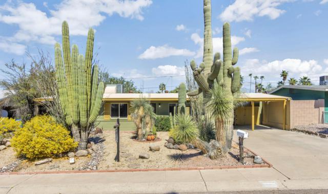 1314 E Diana Avenue, Phoenix, AZ 85020 (MLS #5897220) :: CC & Co. Real Estate Team