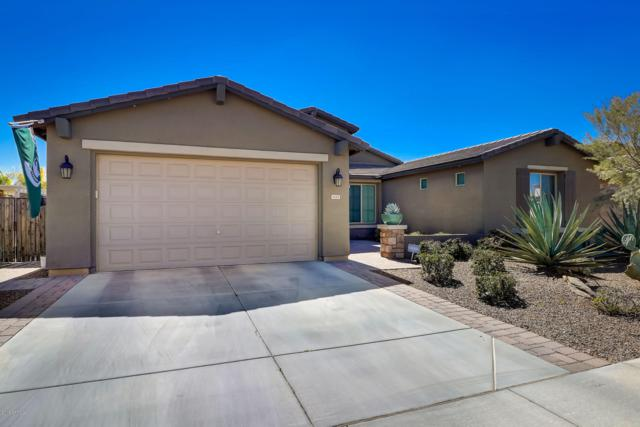 1235 W Plane Tree Avenue, San Tan Valley, AZ 85140 (MLS #5897227) :: Yost Realty Group at RE/MAX Casa Grande