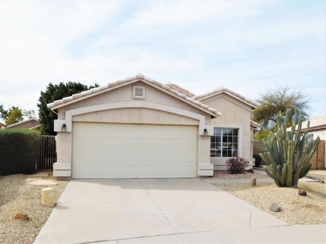 24628 N 38TH Lane, Glendale, AZ 85310 (MLS #5897231) :: Riddle Realty