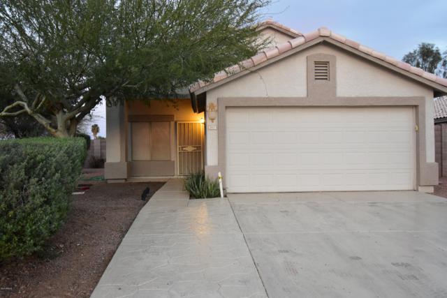 3917 N 105TH Drive, Avondale, AZ 85392 (MLS #5897251) :: Yost Realty Group at RE/MAX Casa Grande