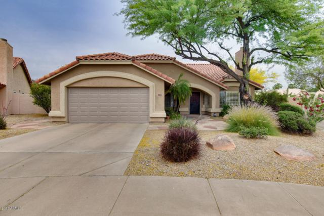 4342 E Rocky Slope Drive, Phoenix, AZ 85044 (MLS #5897282) :: Lifestyle Partners Team