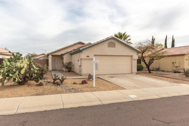 3107 W Salter Drive, Phoenix, AZ 85027 (MLS #5897324) :: Yost Realty Group at RE/MAX Casa Grande