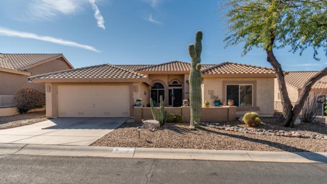 8903 E Yucca Blossom Drive, Gold Canyon, AZ 85118 (MLS #5897325) :: Revelation Real Estate