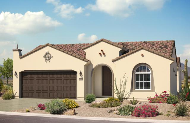 8058 W Valor Way, Florence, AZ 85132 (MLS #5897377) :: RE/MAX Excalibur
