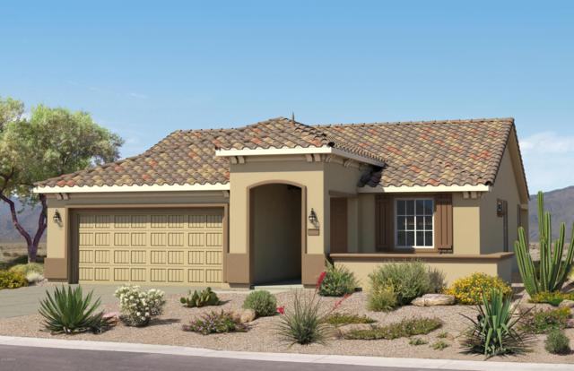 8066 W Valor Way, Florence, AZ 85132 (MLS #5897386) :: RE/MAX Excalibur