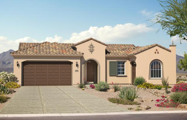3805 N Cottonwood Drive, Florence, AZ 85132 (MLS #5897399) :: RE/MAX Excalibur