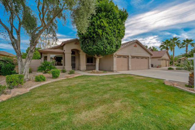 1450 E Carla Vista Drive, Gilbert, AZ 85295 (MLS #5897435) :: Yost Realty Group at RE/MAX Casa Grande
