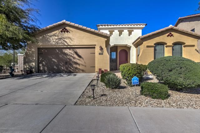 157 N 110TH Avenue, Avondale, AZ 85323 (MLS #5897438) :: The Daniel Montez Real Estate Group