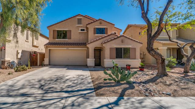 28419 N Quartz Street, San Tan Valley, AZ 85143 (MLS #5897469) :: Yost Realty Group at RE/MAX Casa Grande
