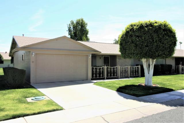 10444 W Roundelay Circle, Sun City, AZ 85351 (MLS #5897496) :: Yost Realty Group at RE/MAX Casa Grande