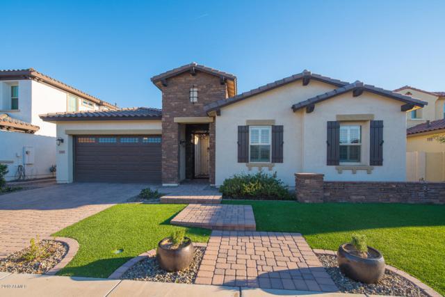 2585 E Ebony Drive, Chandler, AZ 85286 (MLS #5897526) :: The Daniel Montez Real Estate Group