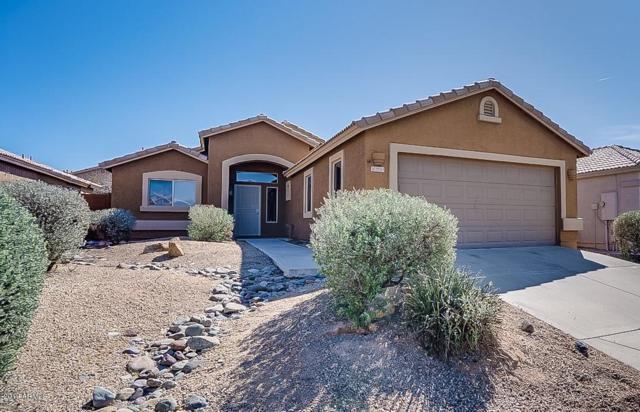29215 N 51ST Street, Cave Creek, AZ 85331 (MLS #5897540) :: The Daniel Montez Real Estate Group