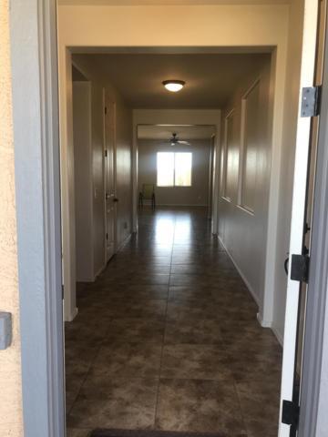 37163 W Merced Street, Maricopa, AZ 85138 (MLS #5897547) :: Santizo Realty Group