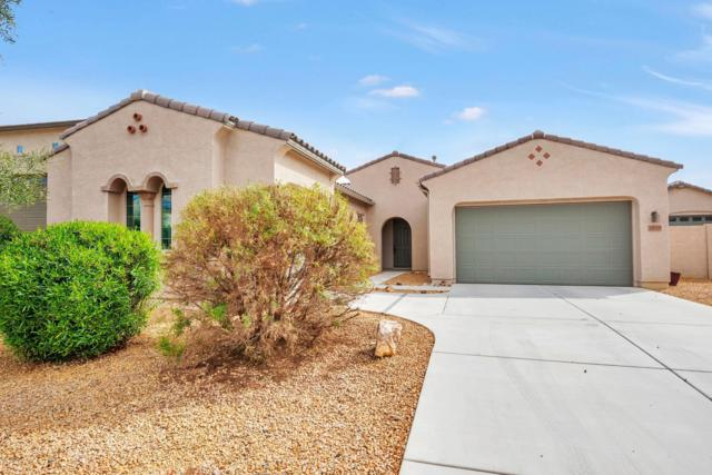 18519 W Denton Avenue, Litchfield Park, AZ 85340 (MLS #5897561) :: Devor Real Estate Associates