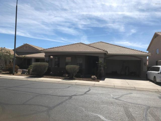 12359 W Cocopah Street, Avondale, AZ 85323 (MLS #5897570) :: Yost Realty Group at RE/MAX Casa Grande