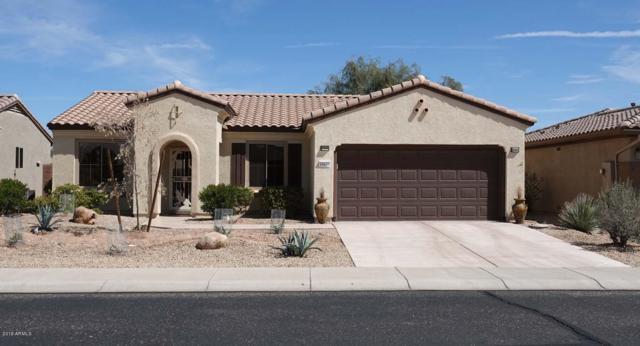 18673 N Red Mountain Way N, Surprise, AZ 85374 (MLS #5897579) :: The Daniel Montez Real Estate Group