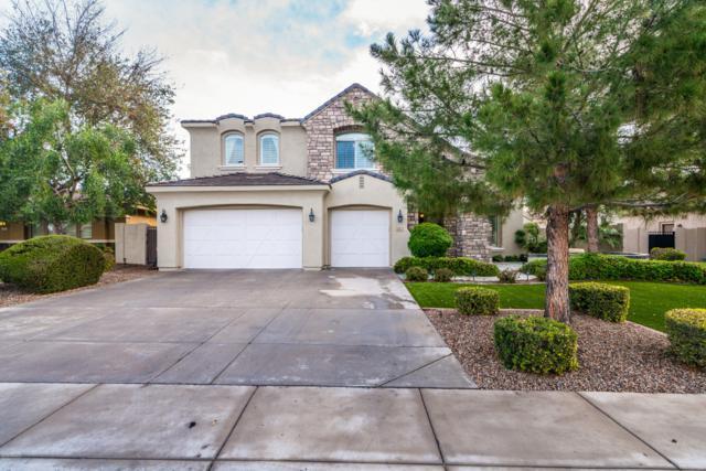 5063 S Pinnacle Place, Chandler, AZ 85249 (MLS #5897580) :: Team Wilson Real Estate