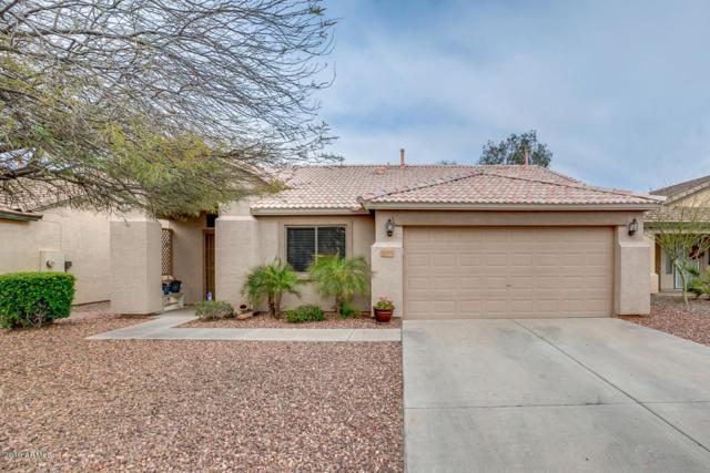 30701 N Royal Oak Way, San Tan Valley, AZ 85143 (MLS #5897583) :: Revelation Real Estate