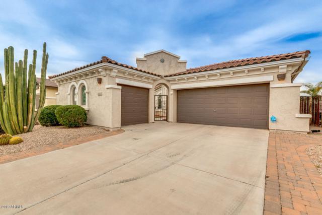 872 E La Costa Place, Chandler, AZ 85249 (MLS #5897606) :: The Daniel Montez Real Estate Group