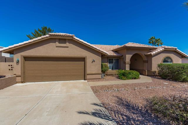 17136 E Oro Grande Drive, Fountain Hills, AZ 85268 (MLS #5897612) :: The Wehner Group