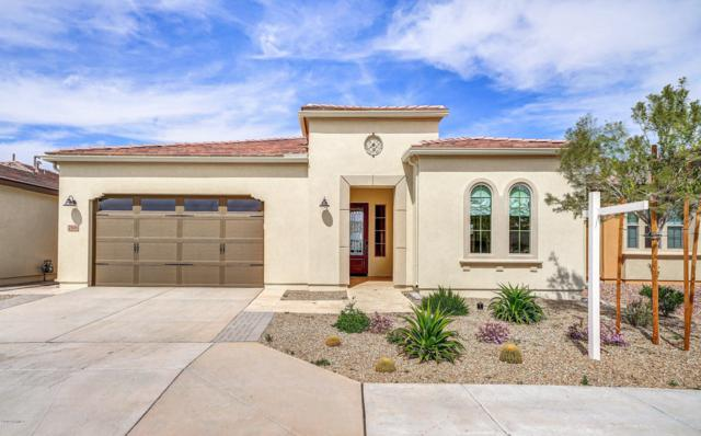 766 E Fruitstand Way, San Tan Valley, AZ 85140 (MLS #5897618) :: Yost Realty Group at RE/MAX Casa Grande