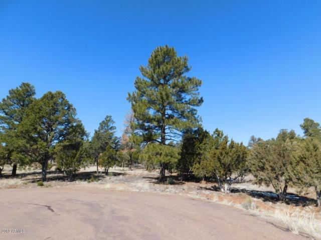 2752 Challenger Drive, Overgaard, AZ 85933 (MLS #5897629) :: Devor Real Estate Associates