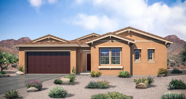 26258 N 106TH Drive, Peoria, AZ 85383 (MLS #5897636) :: The Daniel Montez Real Estate Group