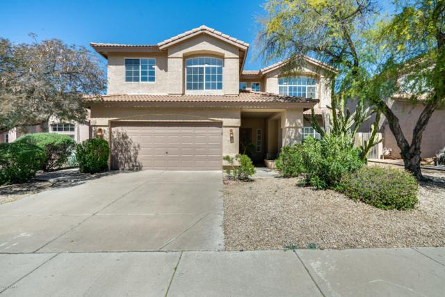 4522 E Rowel Road, Phoenix, AZ 85050 (MLS #5897649) :: Yost Realty Group at RE/MAX Casa Grande
