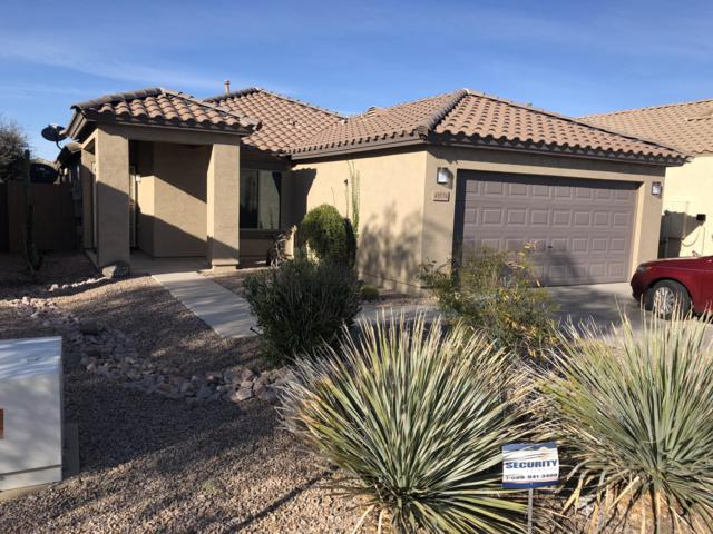 45974 W Holly Drive, Maricopa, AZ 85139 (MLS #5897652) :: CC & Co. Real Estate Team