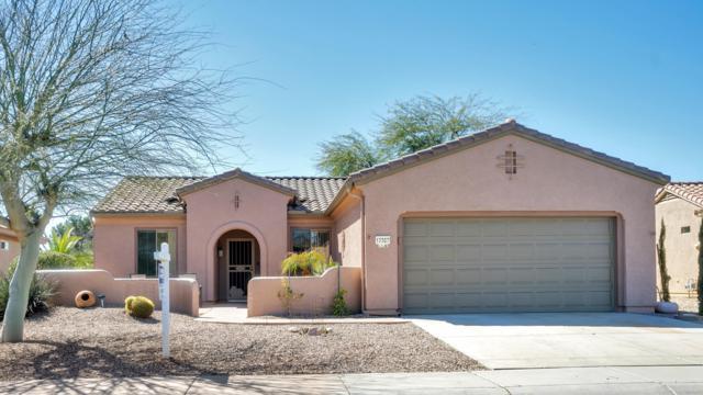17367 W Calistoga Drive, Surprise, AZ 85387 (MLS #5897683) :: The Daniel Montez Real Estate Group