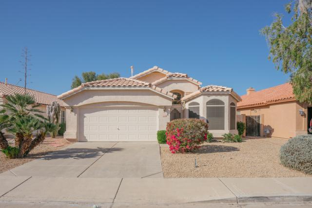 12530 W Edgemont Avenue, Avondale, AZ 85392 (MLS #5897688) :: The Daniel Montez Real Estate Group