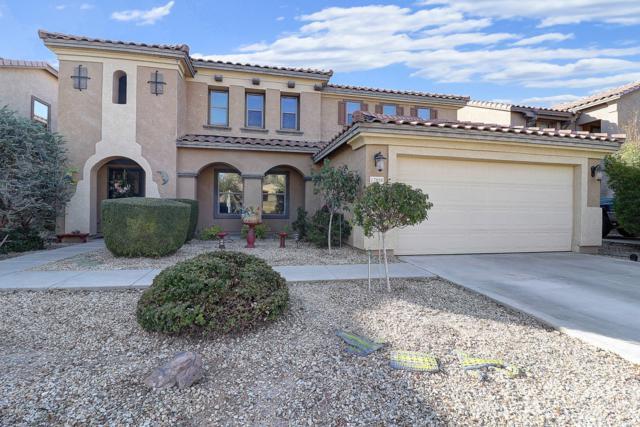 17826 N Bell Pointe Boulevard, Surprise, AZ 85374 (MLS #5897704) :: CC & Co. Real Estate Team