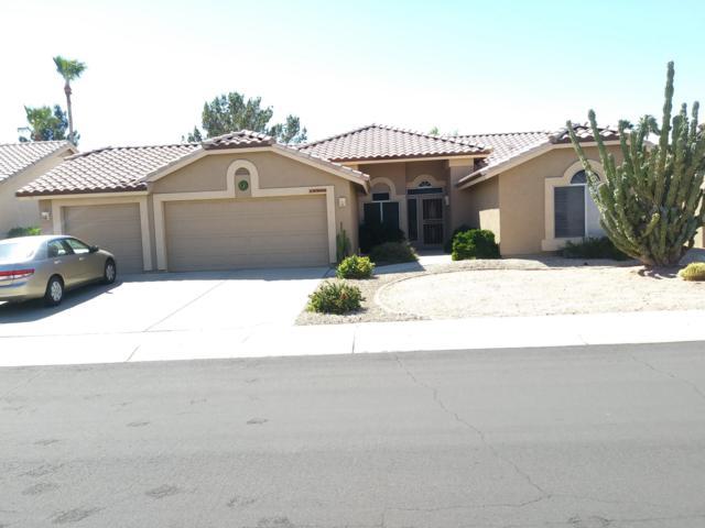 18906 N 88TH Drive, Peoria, AZ 85382 (MLS #5897733) :: The Daniel Montez Real Estate Group