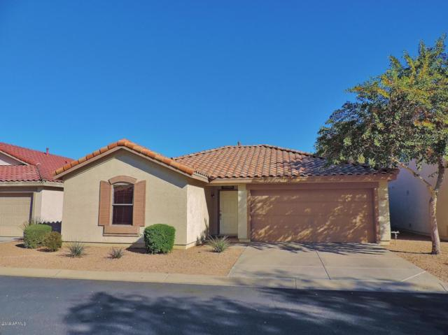 674 E Winchester Way, Chandler, AZ 85286 (MLS #5897735) :: Revelation Real Estate