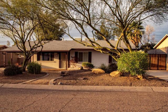 1308 E Ruth Avenue, Phoenix, AZ 85020 (MLS #5897793) :: CC & Co. Real Estate Team