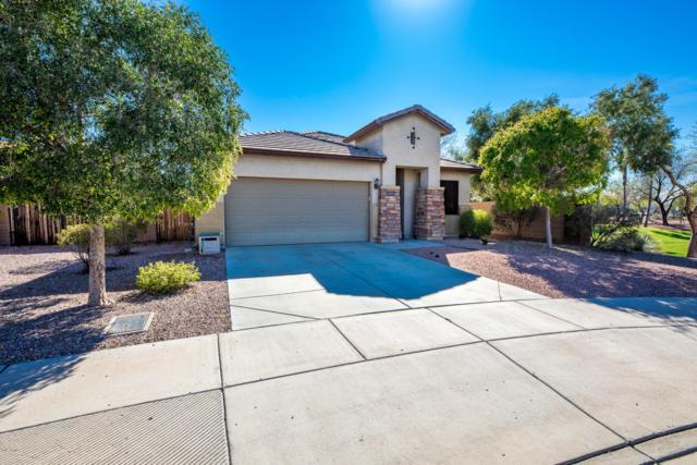 17271 N 169TH Drive, Surprise, AZ 85374 (MLS #5897802) :: The Daniel Montez Real Estate Group
