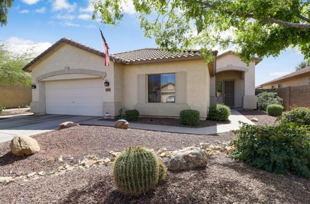 12545 W Modesto Drive, Litchfield Park, AZ 85340 (MLS #5897812) :: The AZ Performance Realty Team