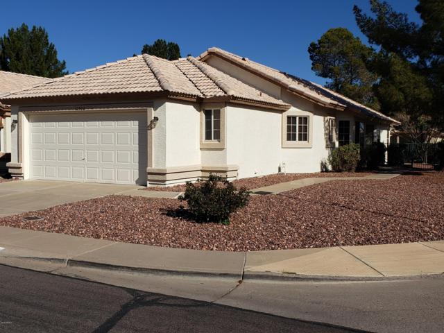 10502 W Yukon Drive, Peoria, AZ 85382 (MLS #5897819) :: Realty Executives