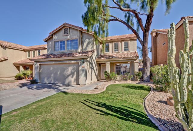 4308 E Bighorn Avenue, Phoenix, AZ 85044 (MLS #5897855) :: RE/MAX Excalibur