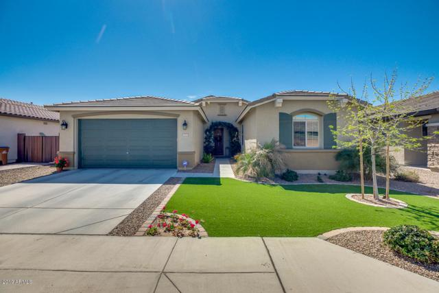 1167 W Redwood Avenue, Queen Creek, AZ 85140 (MLS #5897864) :: Revelation Real Estate