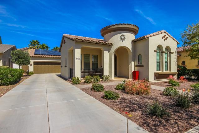 20432 W Monarch Court, Buckeye, AZ 85396 (MLS #5897879) :: CC & Co. Real Estate Team