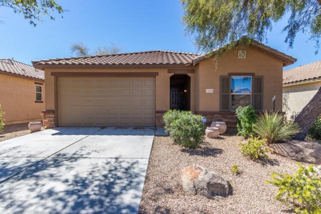 18568 N Celis Street, Maricopa, AZ 85138 (MLS #5897887) :: Yost Realty Group at RE/MAX Casa Grande
