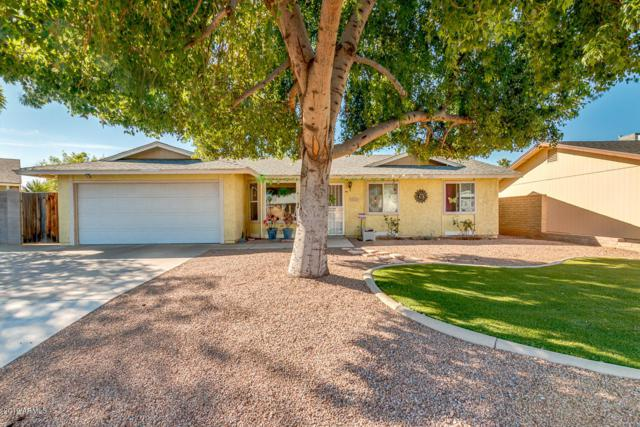 707 W Stottler Drive, Chandler, AZ 85225 (MLS #5897904) :: Revelation Real Estate