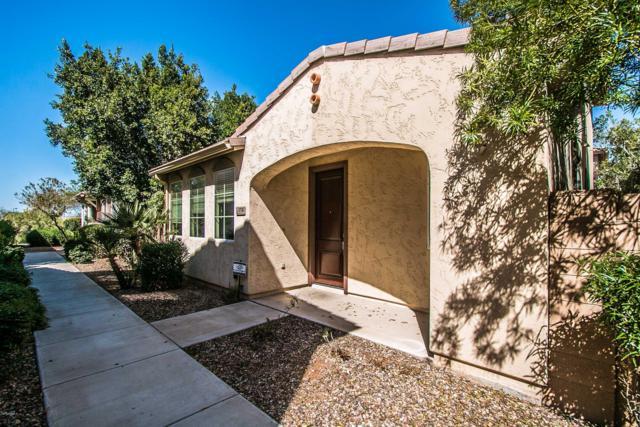 1738 S Chatsworth, Mesa, AZ 85209 (MLS #5897913) :: Yost Realty Group at RE/MAX Casa Grande