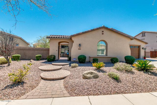 55 W Blue Ridge Way, Chandler, AZ 85248 (MLS #5897933) :: Revelation Real Estate
