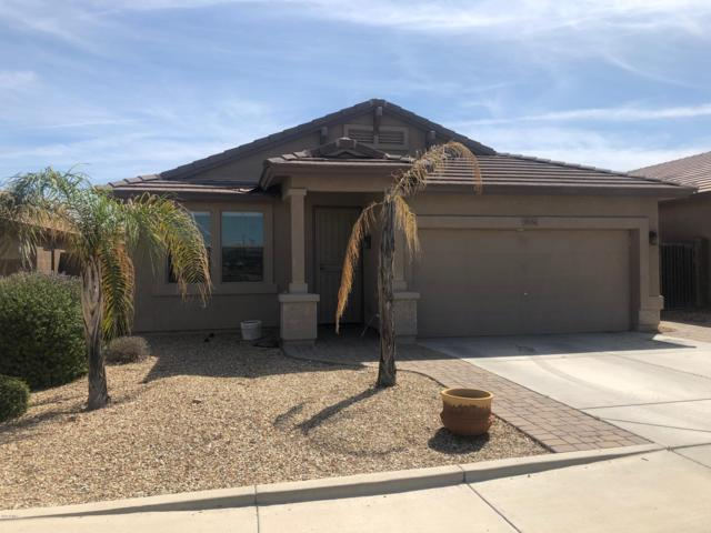 11751 W Donald Drive, Sun City, AZ 85373 (MLS #5897951) :: Yost Realty Group at RE/MAX Casa Grande