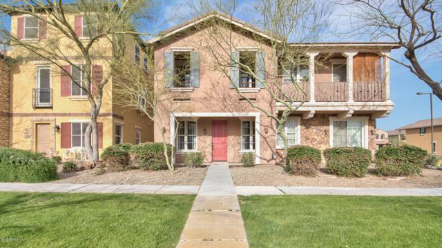 29134 N 125TH Avenue, Peoria, AZ 85383 (MLS #5897953) :: Conway Real Estate