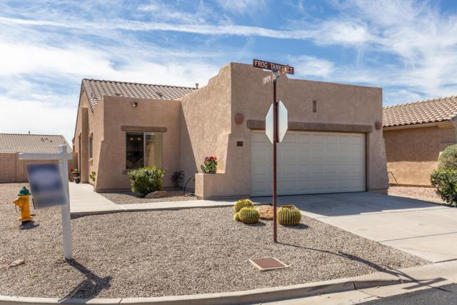 11169 E Frog Tanks Court, Gold Canyon, AZ 85118 (MLS #5897971) :: CC & Co. Real Estate Team
