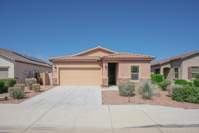 10798 W Avenida Del Rey, Peoria, AZ 85383 (MLS #5897983) :: Conway Real Estate