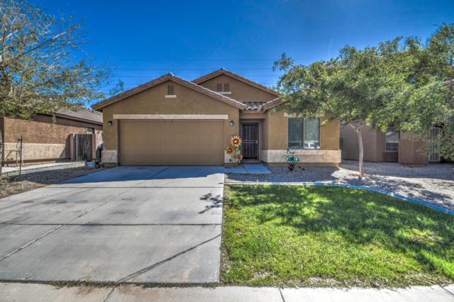30369 W Verde Lane, Buckeye, AZ 85396 (MLS #5897991) :: CC & Co. Real Estate Team